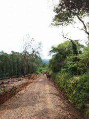 11ª Caminhada Ecológica