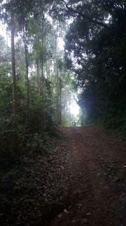 12ª Caminhada Ecológica
