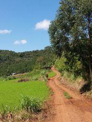 Trajeto da 12ª Caminhada Ecológica